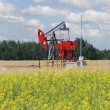 Pumpjack - oil production, oilfield pump jack — Stock Photo
