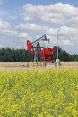 Pumpjack - oil production, oilfield pump jack — Foto Stock