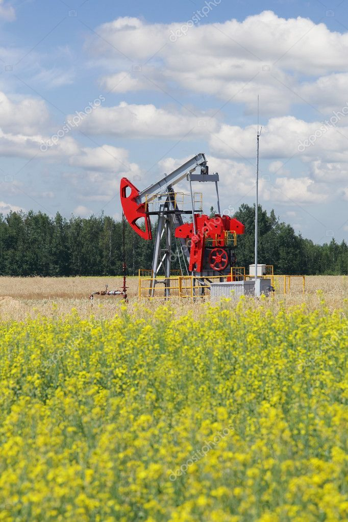 Pumpjack - oil production, oilfield pump jack — Stock Photo #11649106