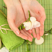 Spa manicure - hands with flower, background — Stock Photo