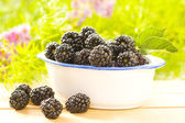 Fresh and tasty blackberries — Stockfoto