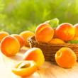 Stock Photo: Fresh apricots