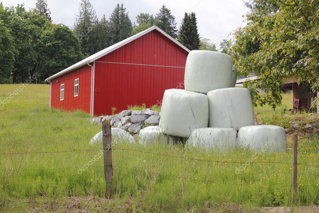 Stacks of wrapped feeding hay and a red utility building on a farm — Stock Photo #10840739