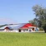 Modern Dairy Farm Buildings — Stock Photo