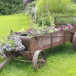 Old Time Flower Planter — Stock Photo