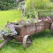 Stock Photo: Old Time Flower Planter