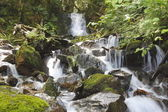 Rocky Mountain Waterfall — Stock Photo