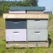 Man made Beehive box. - Stock Photo