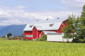 Red Barn with Green Landscape — Stock Photo