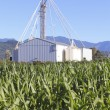 Stock Photo: Farm Grain Silos and Tower