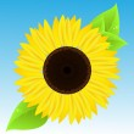 Sunflower — Stock Vector #11501388