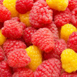 Red and yellow raspberry background — Stock Photo