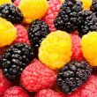 Ripe red and yellow raspberry mulberry — Stock Photo #11238196