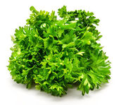 Fresh bunch of parsley isolated — Stock Photo