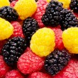 Red and yellow raspberry mulberry background — Stock Photo #11569415