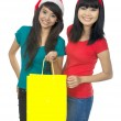 Two Woman Shopping For Christmas — Stock Photo