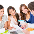 Group of studying - Stock Photo