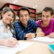 Group of students — Stock Photo #11399688