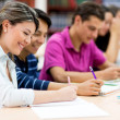 Group of friends studying — Stock Photo #11399707