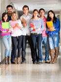 Group of students at the university — Stock Photo