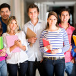 Casual group of students — Stock Photo #11505875