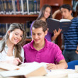 At the library — Stock Photo #11505936