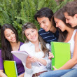 Foto Stock: Group of friends studying
