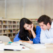 Stock Photo: Couple studying