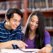 Studying at the library — Stock Photo
