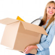 Stock Photo: Womcarrying box