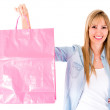 Shopping woman - Stock Photo