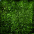 Rough dark green wall — Stock Photo