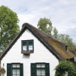 Traditional house - Stock Photo