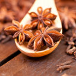 Star anise extreme close up — Stock Photo