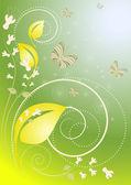 Decoração com borboletas e flores sobre o fundo verde e azul — Vetorial Stock