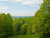 Abrupt descent from a hill in the spring. — Stock Photo