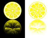 Lemon cut on a black and white background with reflection. — Stock Vector