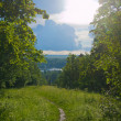 Track in the wood over the lake. — Stockfoto #11437811