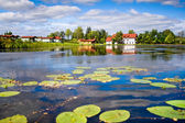 Beautiful forest lake with water lilies on surface — Stock Photo