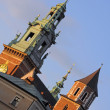 Wawel detail — Stock Photo