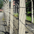Prison fence — Stock Photo