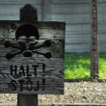 Halt sign — Stock Photo