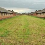 Houses in concentration camp Birkenau near Oswiecim, Slovakia — Stock Photo #11423320
