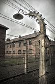 Koncentrationsläger — Stockfoto