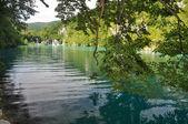 Lago verde — Foto Stock