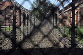 奥斯维辛集中营 — 图库照片