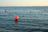 Buoys on water — Stock Photo