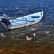 White boat — Stock Photo #11722432