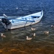Stockfoto: White boat