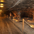 Salt mine Wieliczka — Stock Photo